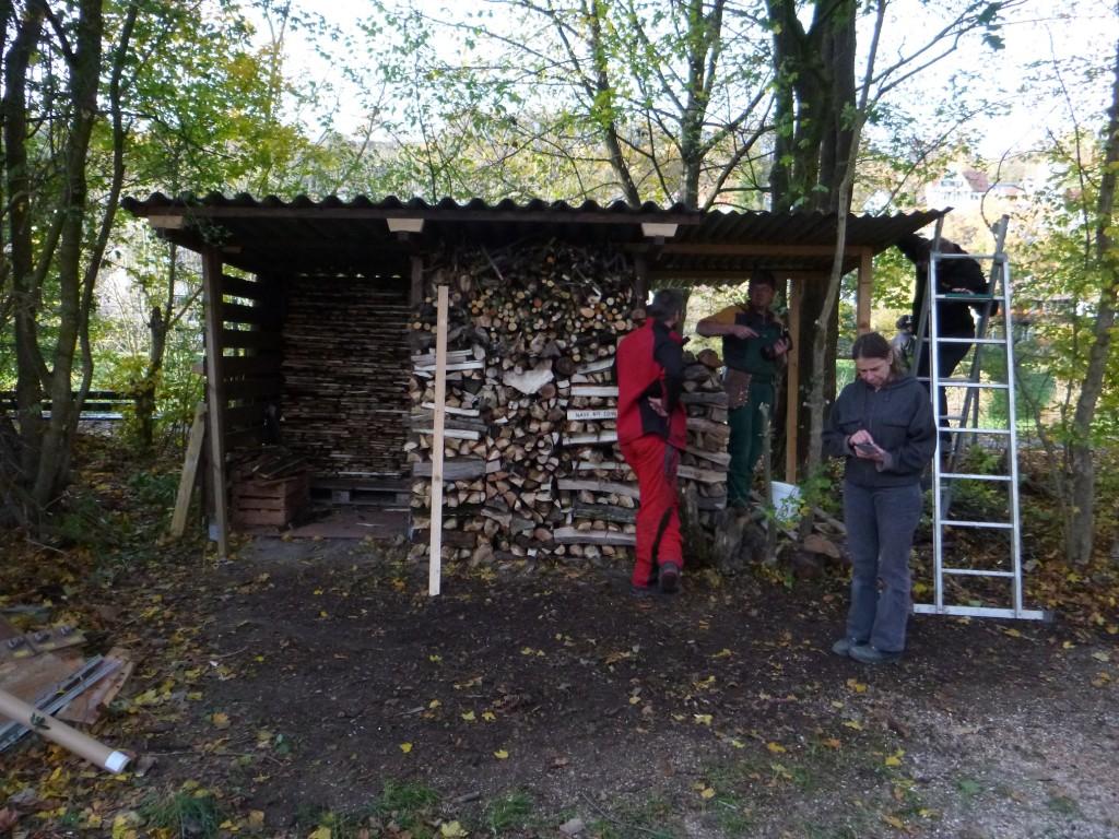Bootshausputzete Herbst 2013 37